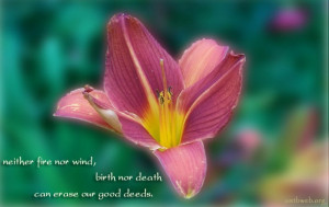 picture quotes sayings on good deeds
