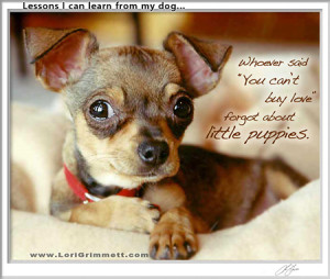 Dog Wisdom About Puppies