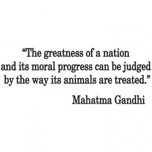 Gandhi Quote Apparel Gifts & Accessories