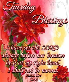 PSALM 16:8 ~~~~~ GOOD MORNING EVERYONE!! HAVE A MOST BLESSED ...