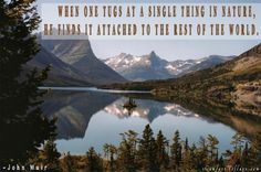john muir more inspiration nature comforters quotes muir quotes all of ...