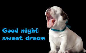 Good night (puppy yawning) funny