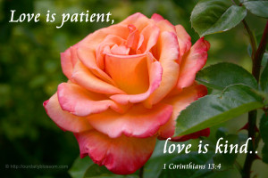 Love is patient, love is kind… – 1 Corinthians 13:4
