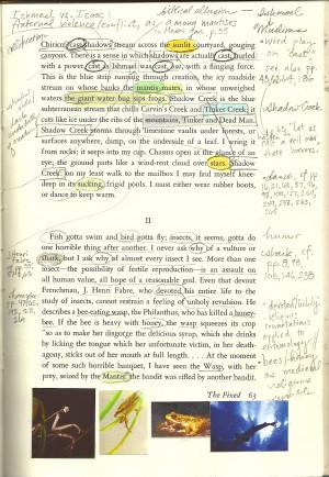 An analysis of literary elements in annie dillards essay
