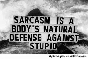CAP 23: El día del Sarcasmo.