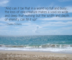 ... void so wide and deep.....Healing Pet Loss Quote - Charles Dickens