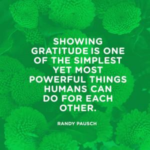 gratitude quotes the 25 top quotes on gratitude gratitude quotes