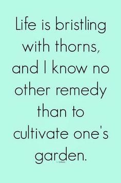 ... no other remedy than to cultivate one's garden | Inspirational Quotes