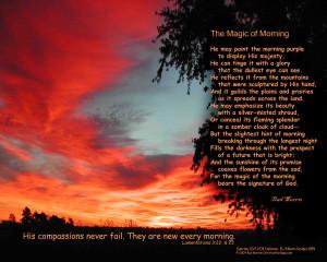 ... sunsetmoment city sunrise web willowtree sunrise 0 sunrise