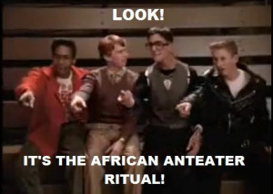 It's the African Anteater Ritual!!!