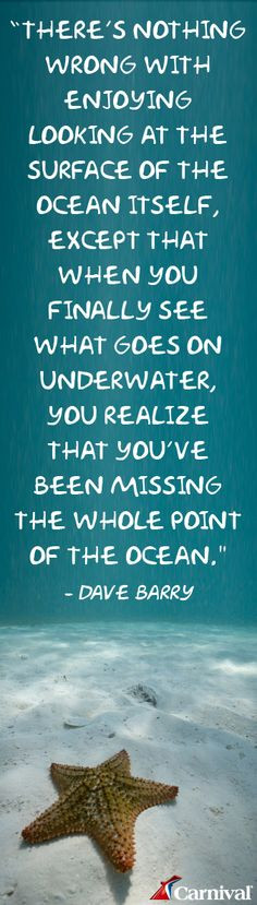 We had no idea how much there was to see underwater and how incredible ...