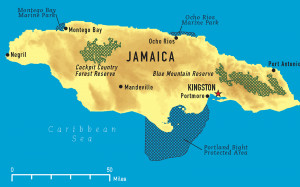Jamaica Map in flag colors