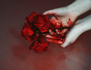 red blood beautiful cutter rose roses bloody cutters