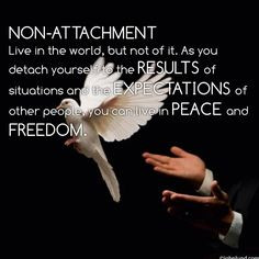... expectations of other people, you can live in Peace and Freedom. More