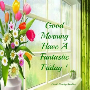 Good Morning have a fantastic Friday...