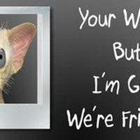 ... friends quotes or sayings photo: glad we're friends were-friends.jpg