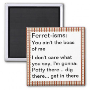 Funny Ferret Gifts - Shirts, Posters, Art, & more Gift Ideas