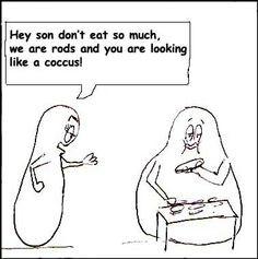 microbiology humor shapes more microbiology jokes microbiology humor ...