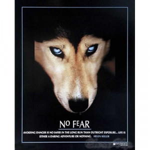No Fear Wolf Helen Keller Quote Motivational Animal Poster 16 x 20