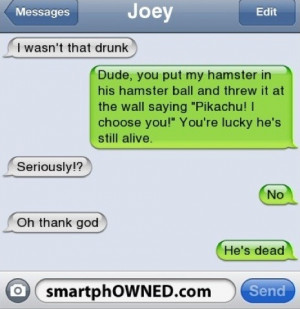 pikachu #i wasn't that drunk #hamster