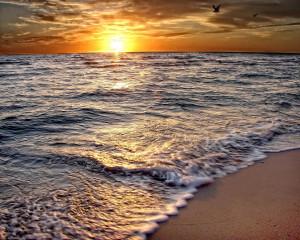 Beach Sunrise Joe Myeress