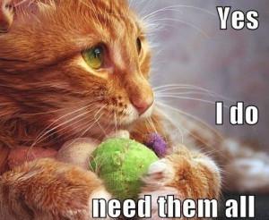 Cat Yes I DO need them