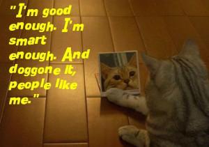 stuart smalley kitty (SNL)