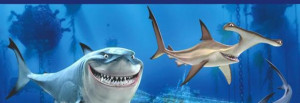 Finding Nemo Quotes - Page 6 - Movie Fanatic