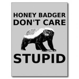 Honey Badger Don't Care STUPID Postcard