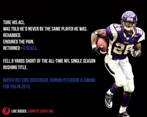 Adrian Peterson set the bar high for recovery from an ACL injury. The ...