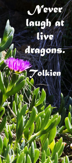 """at live dragons."""" J.R.R. Tolkien -- Explore insightful quotations ..."""