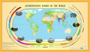 Temperate Grassland Biome World Map