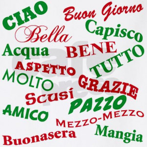 italian_sayings_bbq_apron.jpg?color=White&height=460&width=460 ...