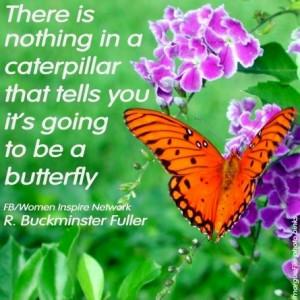 ... butterflies 91 butterflies butterflies nurseries butterflies
