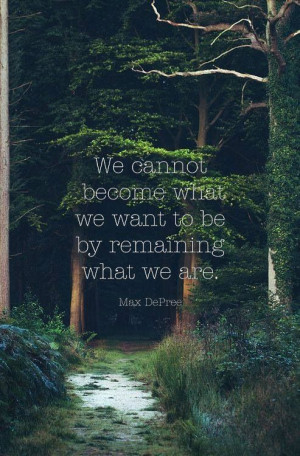 Max Depree quote