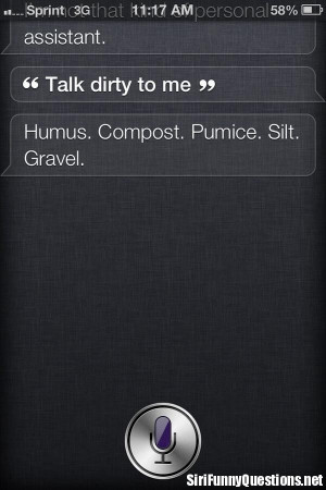 ... fun siri funny siri funny questions siri quotes with no comments tweet