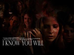 Buffy the Vampire Slayer BuffyTheVampireSlayer