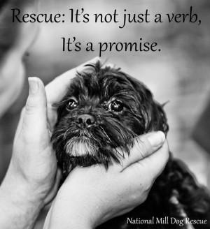 rescue quotes