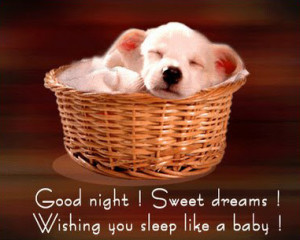 Good Night SMS quotes for girlfriend with images