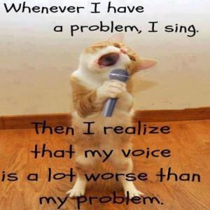 Hilarious LOLcat Pic