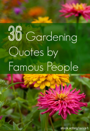 36 of the Best Gardening Quotes from Famous People