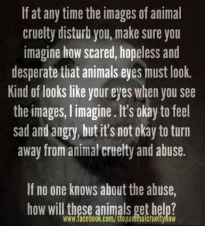 Animal Cruelty I always, always post all the pics on FB and Pinterest ...