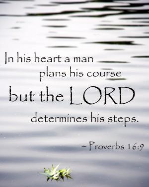 Let God determine your steps