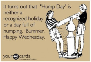... Hump Day, Fun Stuff, Funny Quotes, Funny Stuff, Humpday, Humor, Ecards