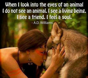 Native American Animal Quotes