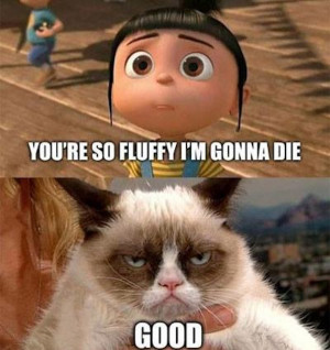 Despicable Me and Grumpy Cat