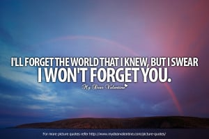 Amazing Love Quotes - I will forget the world