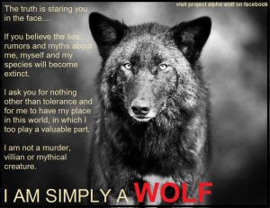 am simply a wolf - if only the wolf haters could know this - they ...