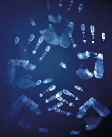 www.forensicpanel.com