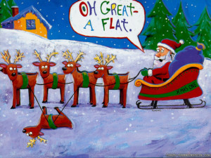 Funny Christmas pictures, Christmas images, funny reindeer with ...